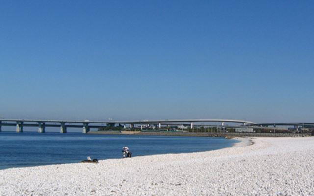 大阪の人気海水浴場のマーブルビーチ