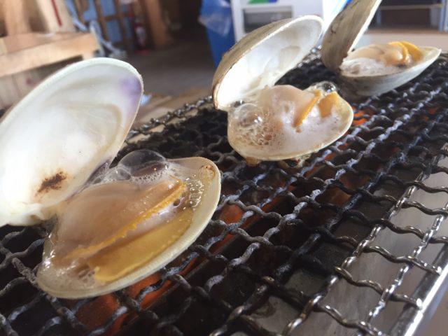 九十九里浜の海水浴場で食べて欲しいハマグリ