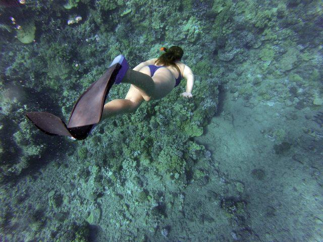 シュノーケリングの道具をつけて泳ぐ人