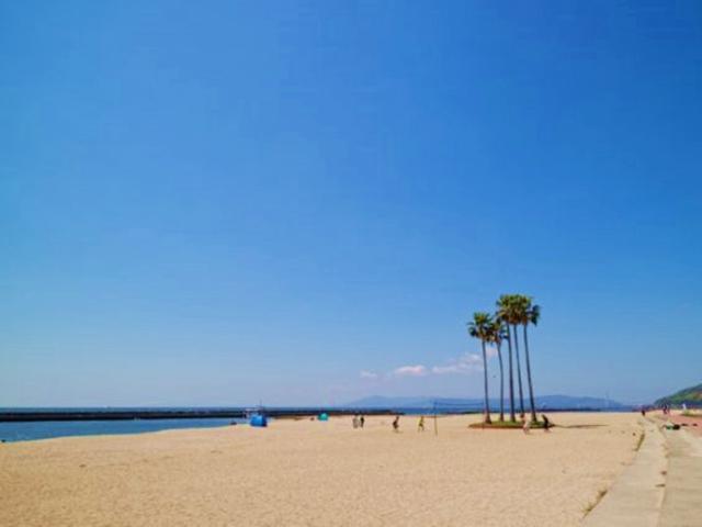 関西の有名なやしの木がある海水浴場