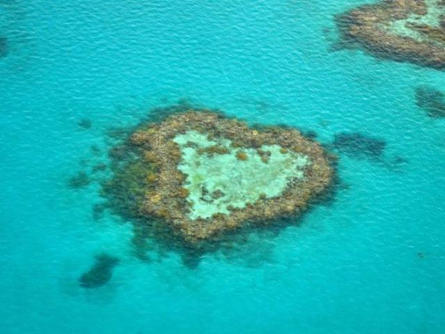 ハミルトン島のハートの形