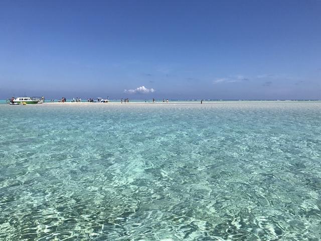 百合ヶ浜は出現日以外でも見れる?実際のツアー参加レポート♡