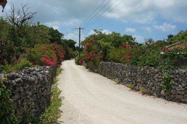 冬の沖縄の道