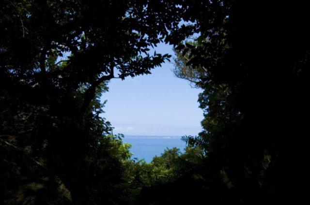 沖縄の冬でも楽しめる観光地