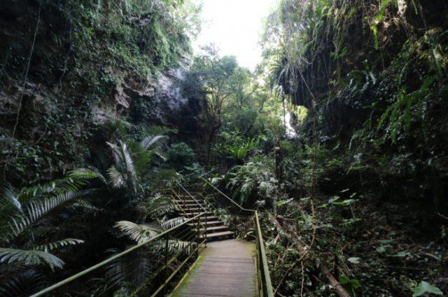 冬の沖縄の人気観光地