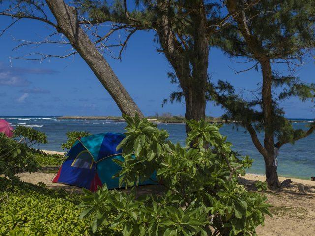 ビーチに立てられたテント