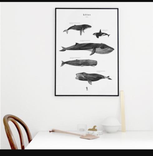 鯨の人気なモノクロポスター