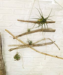 流木インテリアの事例