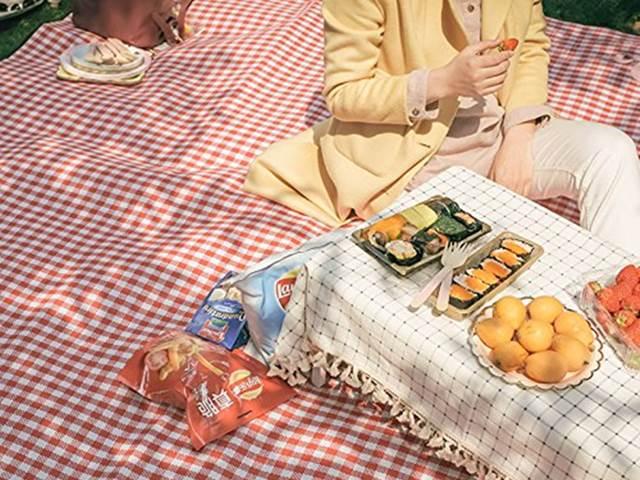 おしゃれレジャーシートでピクニック