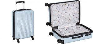 ハントのかわいいスーツケース