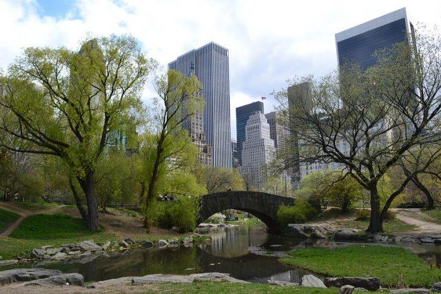 ニューヨーク観光地のセントラルパーク