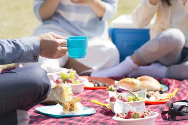 ピクニックに必須の持ち物である食べ物