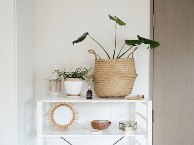 鉢カバーでおしゃれに変身!布・陶器・かご別のおすすめと使い方