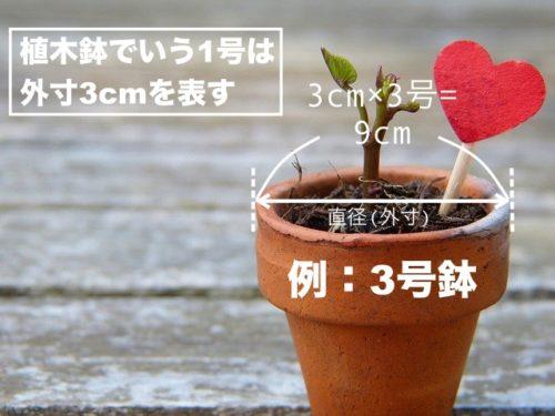 鉢植えカバーの選び方の基本図