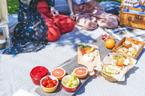 おしゃれなお弁当箱を持ってピクニック